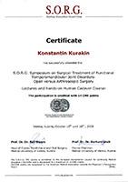 S.O.R.G. Symposium on Surgical Treatment of Functional Temporomandibular Joint Disorders Open versus Arthroscopic Surgery